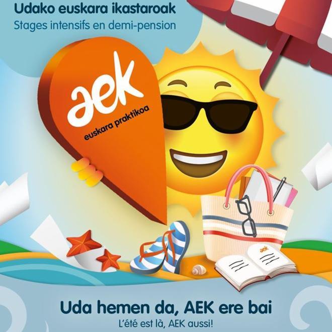 Aek-k_proposatu_udako_ikastaldiak_moldatuak_baina_mantenduak